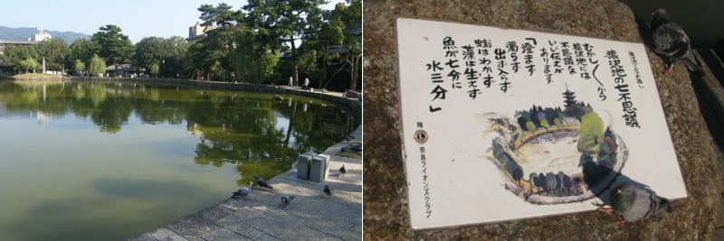 昔からある池