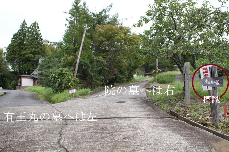 有王の墓と院の墓の別れ道