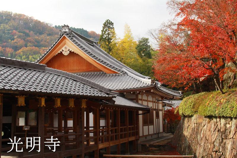 蓮生閣の屋根