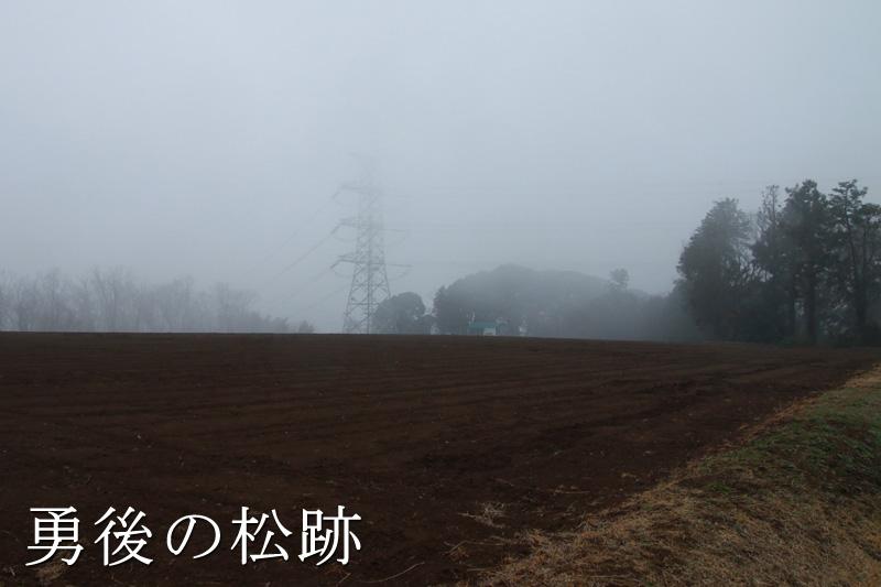 靄がすごい